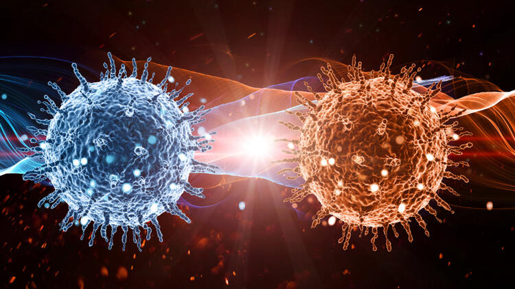 Coronavirüs İnternete Sıçradı