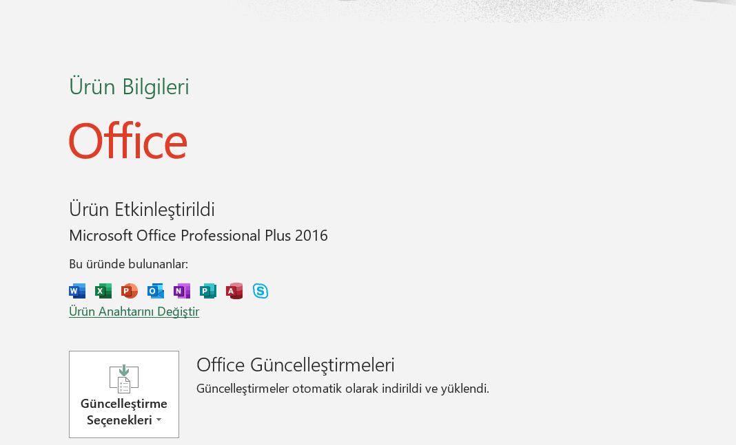 Microsoft office etkinleştirme sonucu