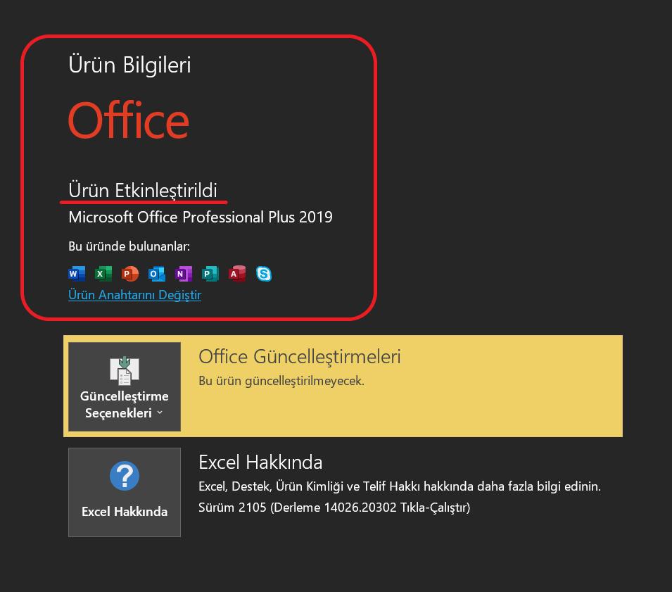 Office 2019 programının etkinleştirme kontolü